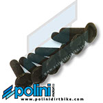 POLINI NUMBER PLATE BOLT ASSEMBLY